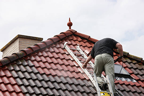 172967388 - Roof Cleaning
