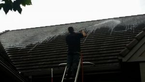 30007410 10156243533568493 1510351251 n 300x169 - Kansas City Gutter Cleaning