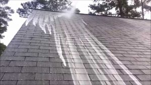 removing algae from asphalt roof 300x169 - Removing Algae From Asphalt Roof | Non Pressure Roof Cleaning | Clean Pro Exteriors