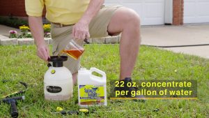 roof cleaner how to video 300x169 - Roof Cleaner How To Video